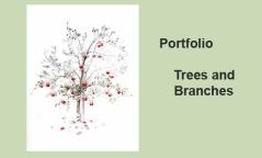 Portfolio - TREES & BRANCHES