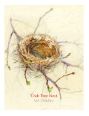 Crab-Tree-Nest-WP-
