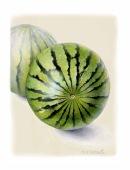 Melons-WP-